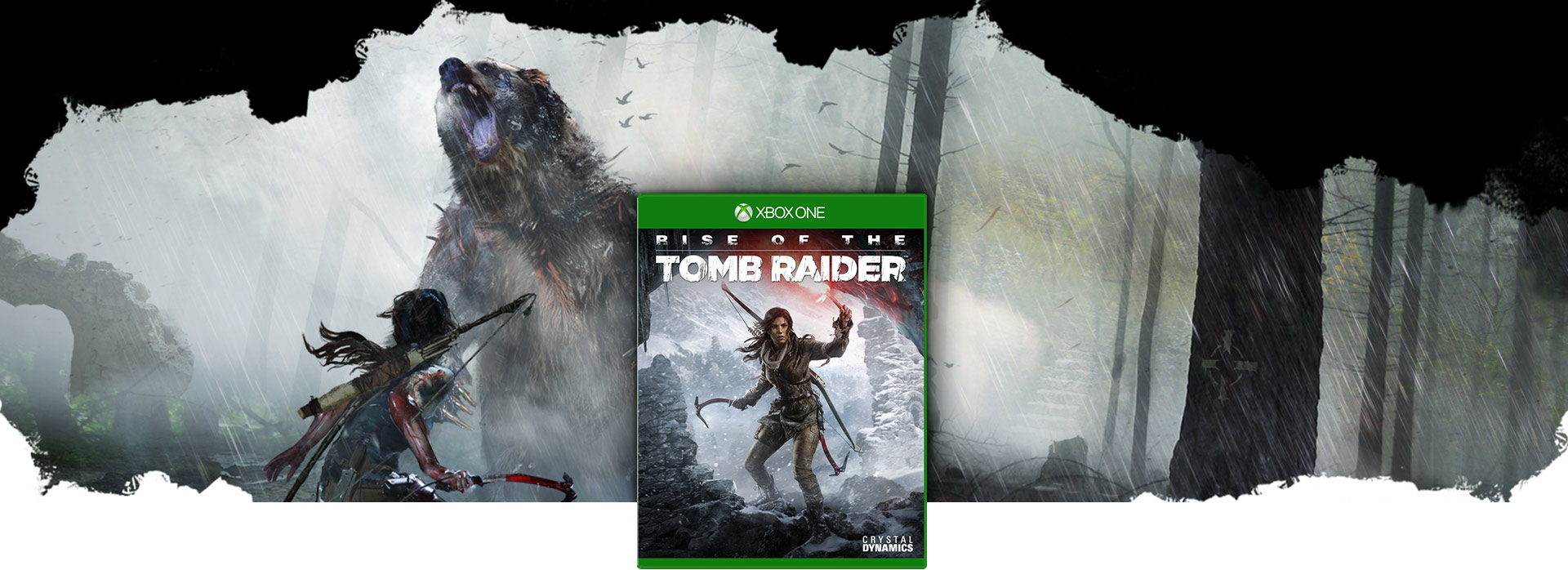 Rise of the Tomb Raider boxshot, over a background scene of Lara Croft confronting a Grizzly Bear